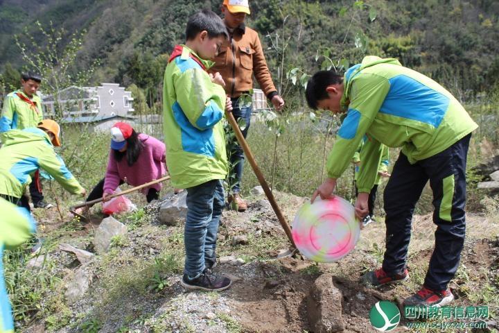 """石棉县草科小学开展""""我与小树共成长""""植树活动"""