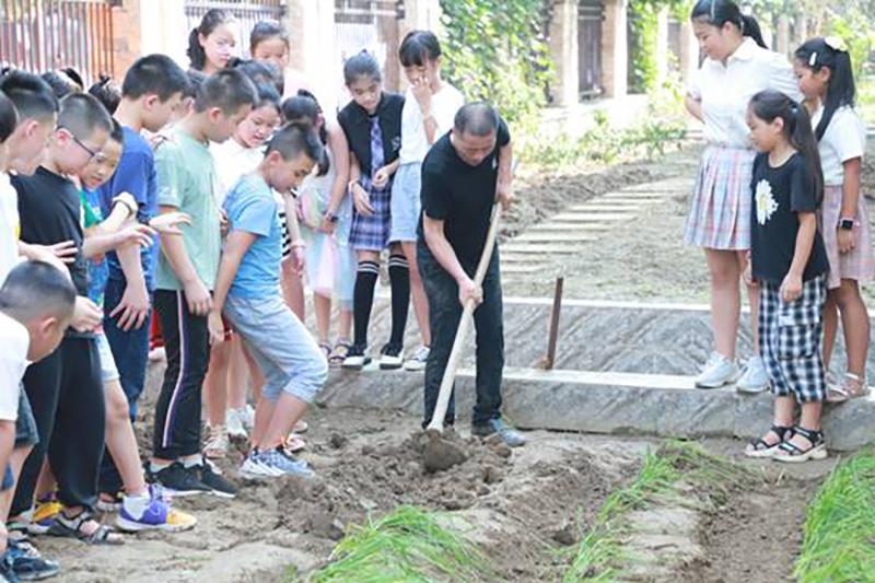 遂宁市河东实验小学校开展劳动实践体验活动
