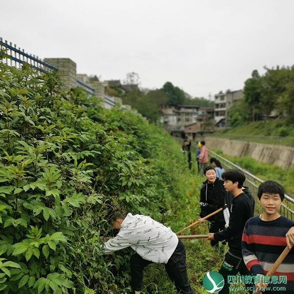 遂宁市三新学校组织学生进行劳动实践活动